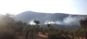 Fire in Thasos