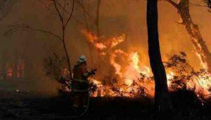 Blue Mountains bushfire