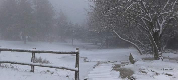 Fresh Snow Greece