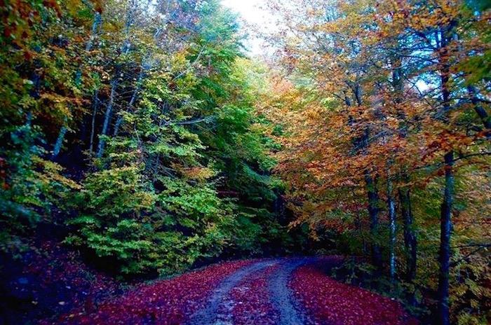 Greece autumn