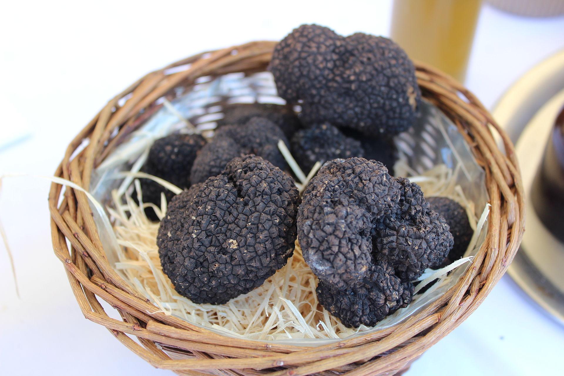truffles truffles greek zeuss