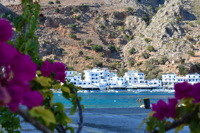 Bay of Loutro, flowers, Crete