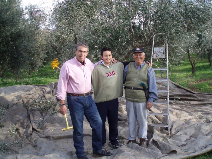 Three generations of the Sakellaropoulos family (father, son, and grandfather) in their olive grove at harvest time