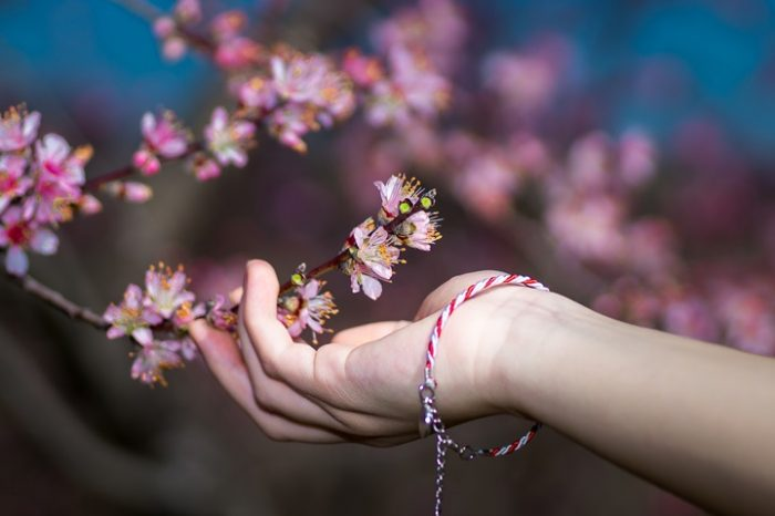 peaches blossoms imathia