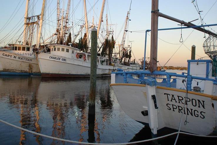 Tarpon Springs Bay