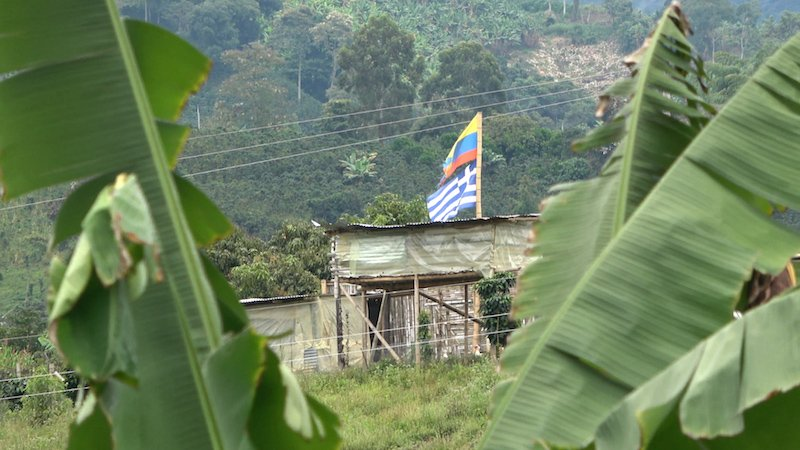 The Finca of The Greek Coffee grower of Colombia