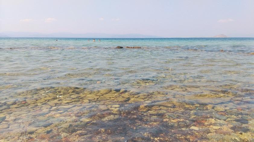 Bathers swimming ancient ruins at Aegina's
