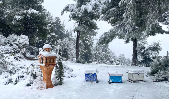 Medea cold front to hit Greece