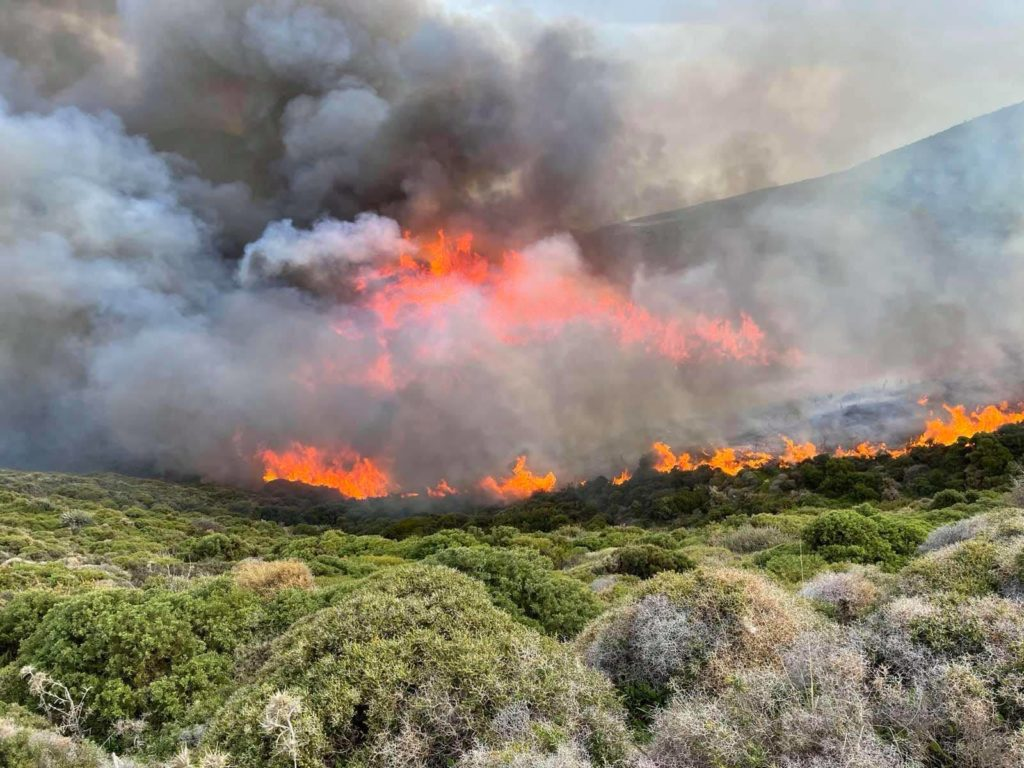 Andros fire
