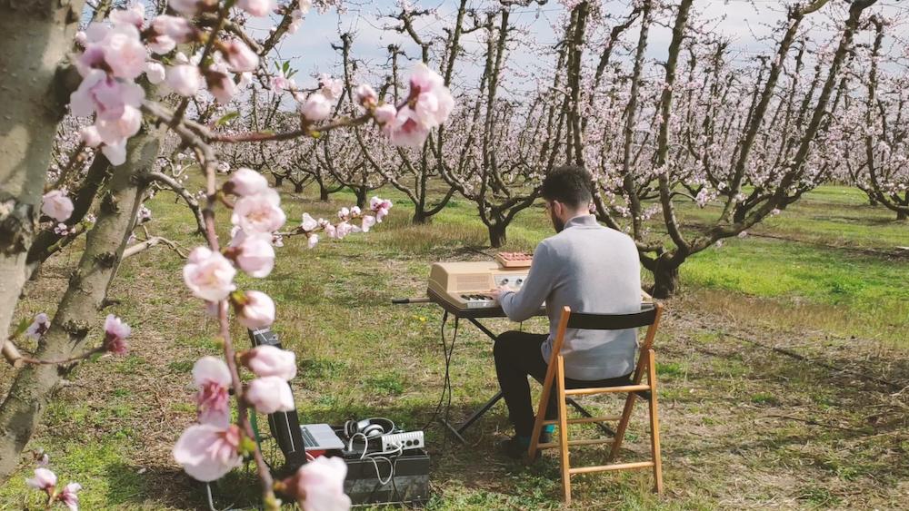 piano peach trees manos milonakis