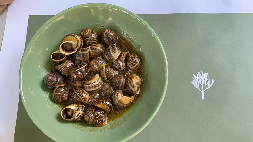 Koxlioi snails Kritamon restaurant Crete Chef Mavrakis