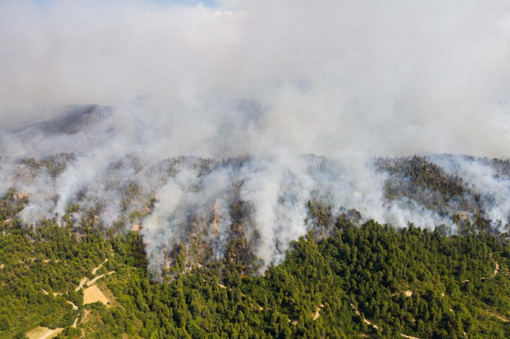 wildfire smoke coronavirus