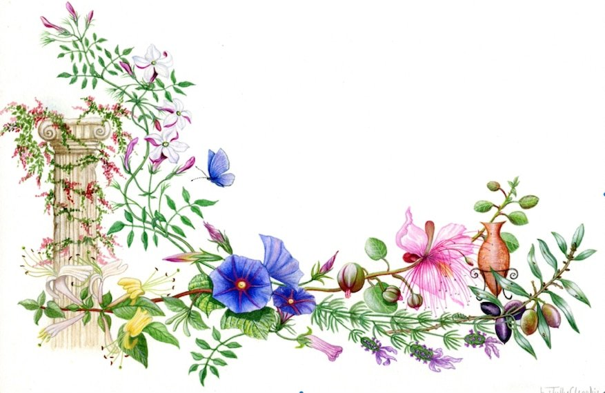 The flowers of Greece