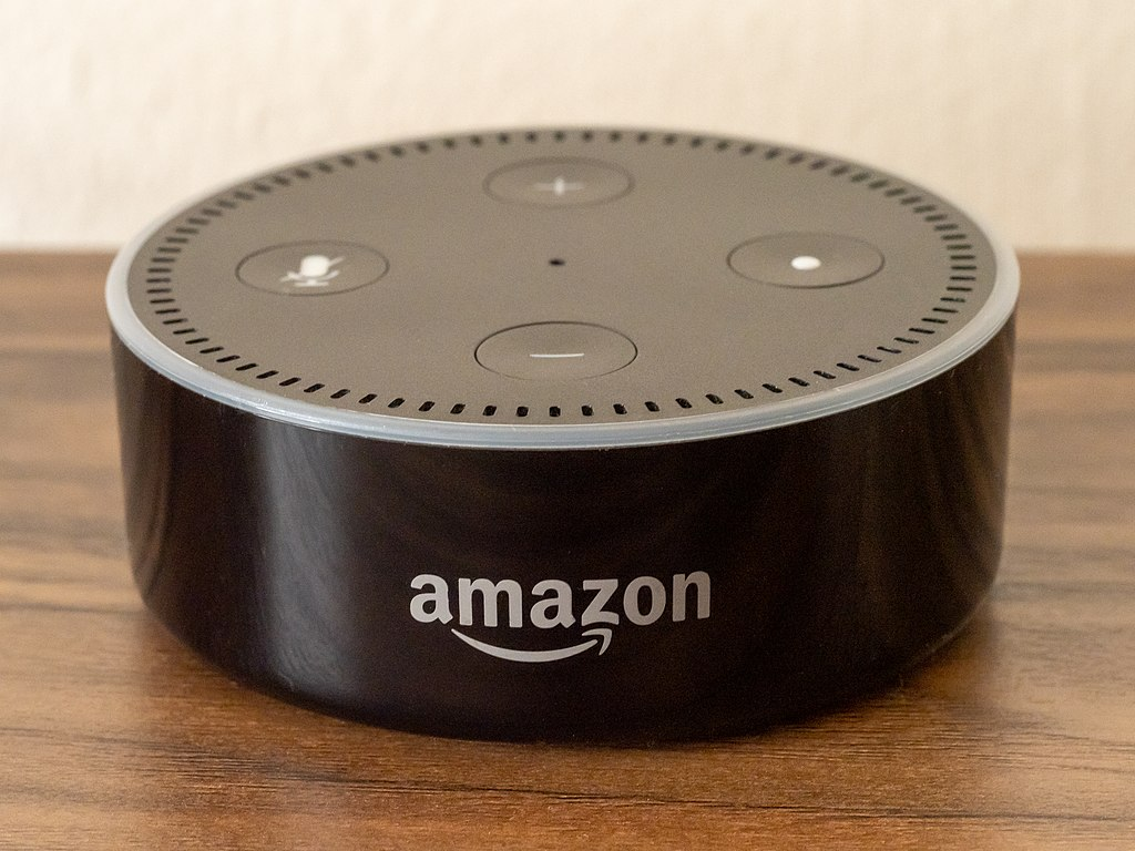 Woman Shocked Finding Voice Recordings Amazon Made of Her With Alexa - Greek Reporter