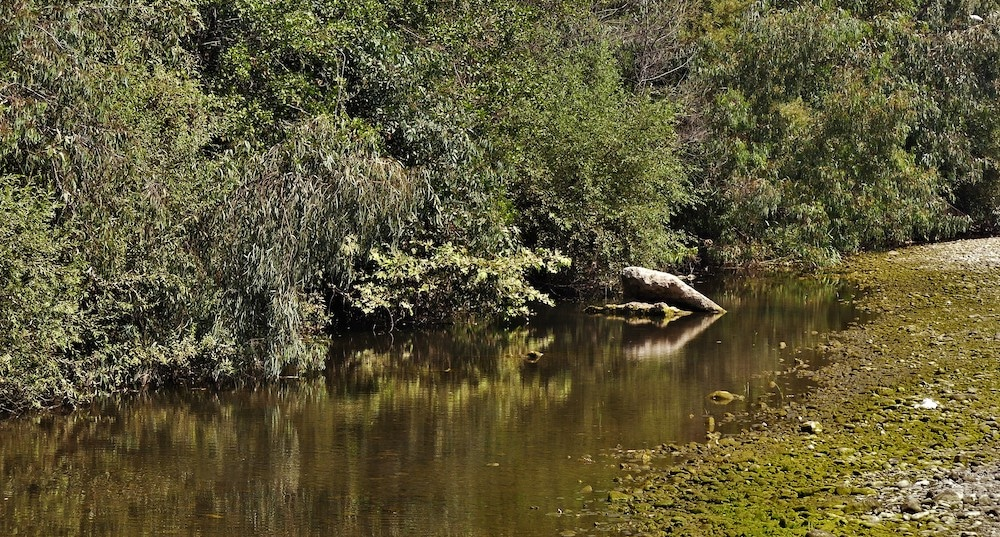 mornos river wetlands greece